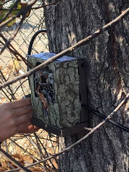 Wildlife cameras like this one are being installed along the L.A. River.  Map of zones along L.A. River where wildlife cameras are being installed. | National Park Service