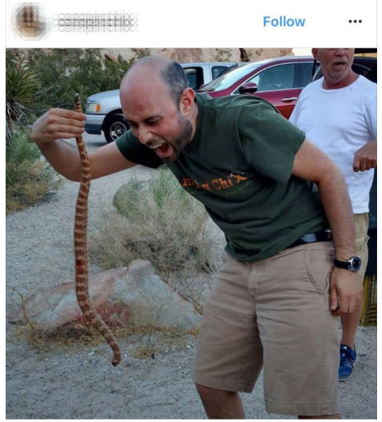 JTNP visitor plays with beheaded rattlesnake | Image: via Instagram