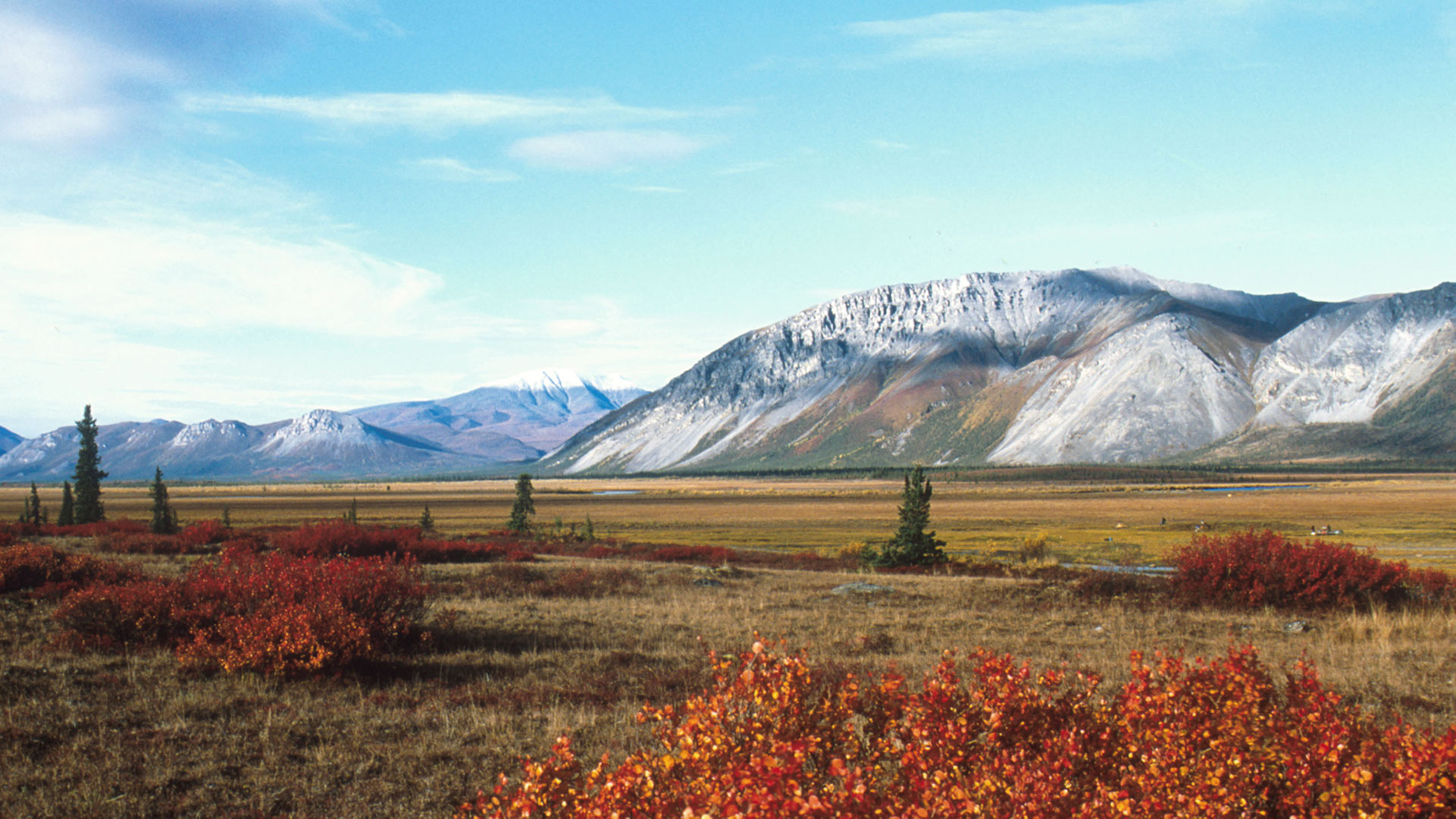 An undated photo of the Arctic National Wildlife Refuge in Alaska. | Steven Chase/U.S. Fish and Wildlife Service via Getty Images