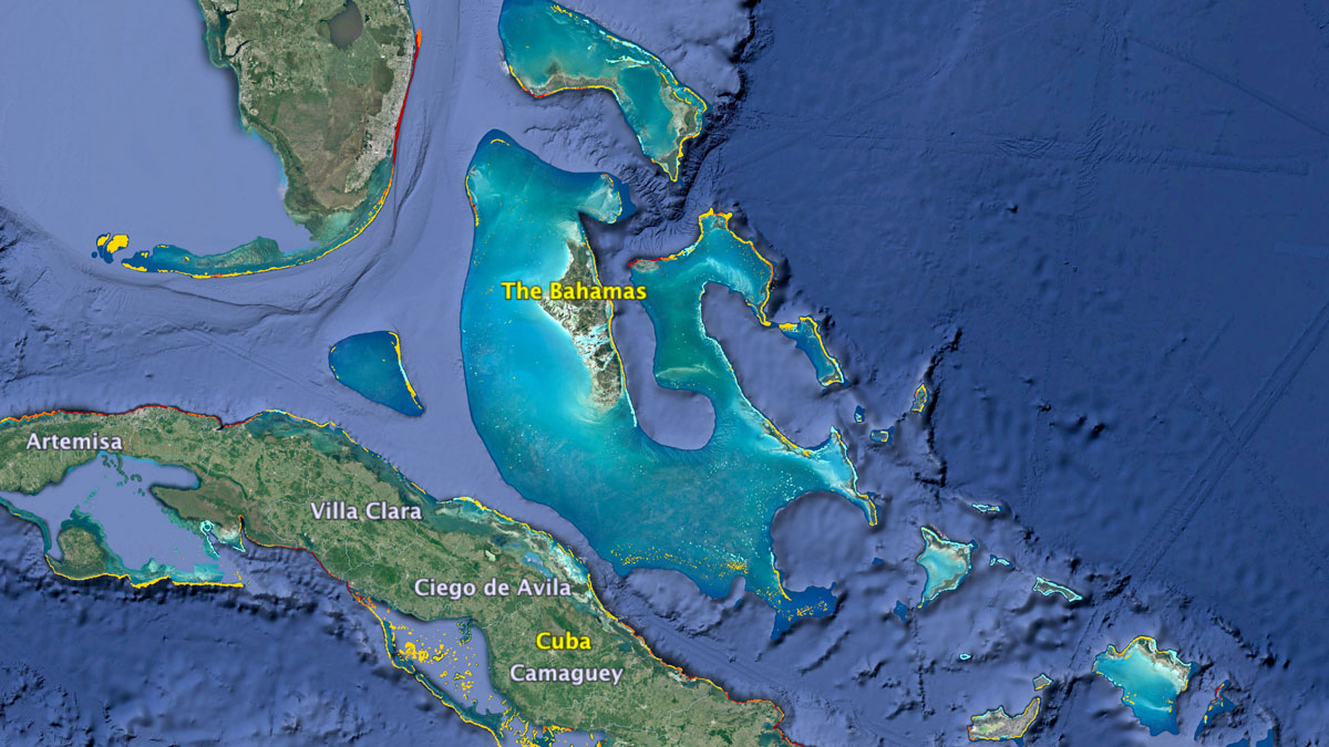 Where Can I Find Coral Reefs Near Me  KCET