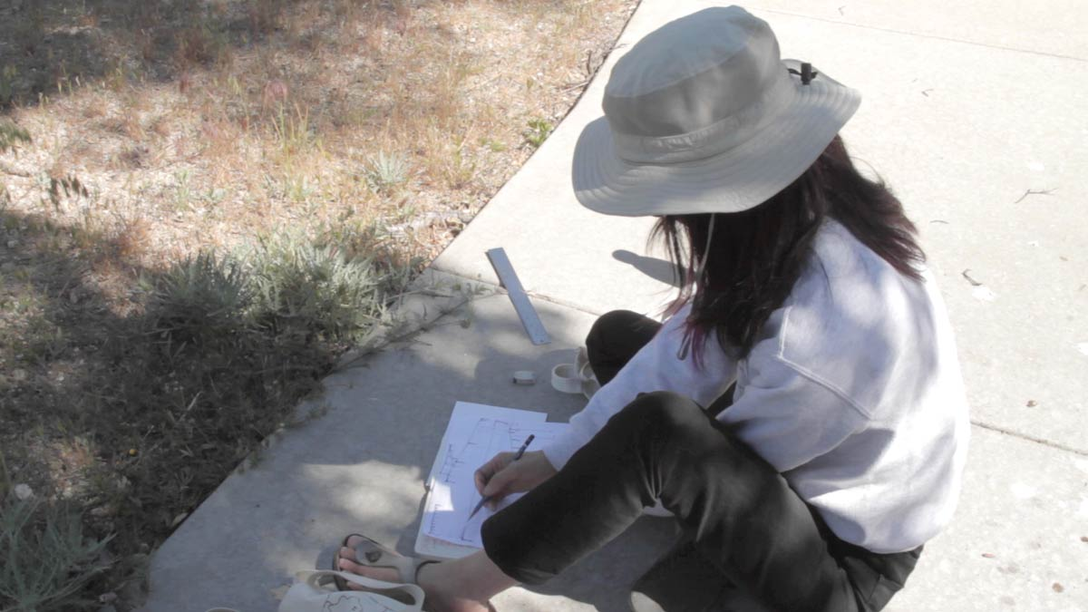 "Gloria Lee on the ground drawing at the Oak Grove site for ""Three Border Ecologies"" 