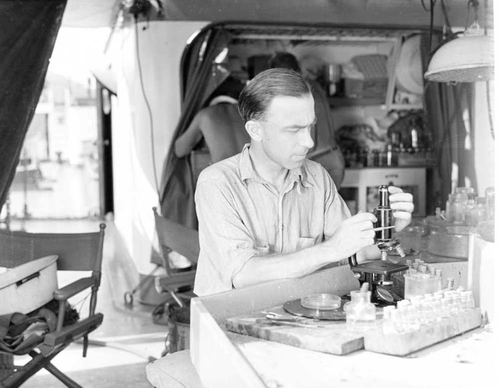 Harold Manter examines trematode parasite specimens, Velero III, 1934 | Allan Hancock Foundation Collection, USC Libraries