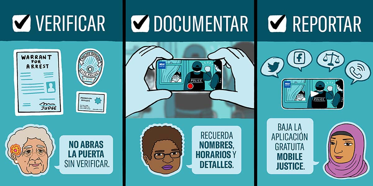A Spanish version of an illustration that outlines the steps communities should take to report ICE visits. | Audrey Chan, ACLU SoCal