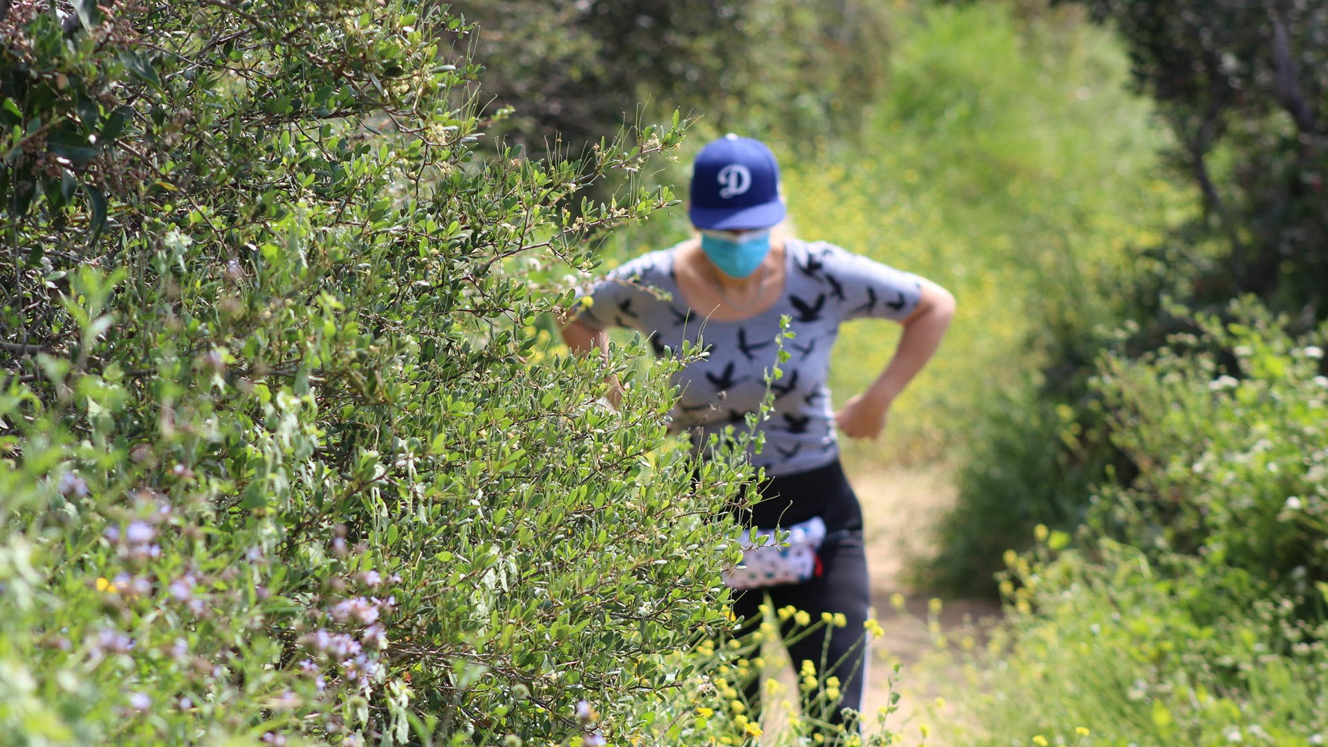 A woman stops on a trail in Temescal Canyon, May 9. 2020, the first day L.A. City and County trails are reopened. | Karen Foshay