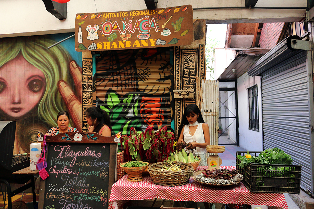 Fresh produce stand and Oaxacan food at the Tijuana Zine Fest | Samanta Helou Hernandez