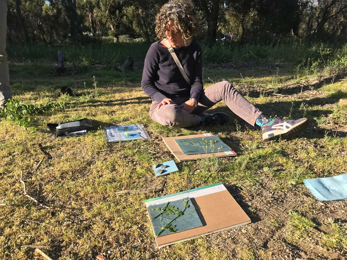 "Hillary Mushkin drawing at Oak Grove site for ""Three Border Ecologies"" 