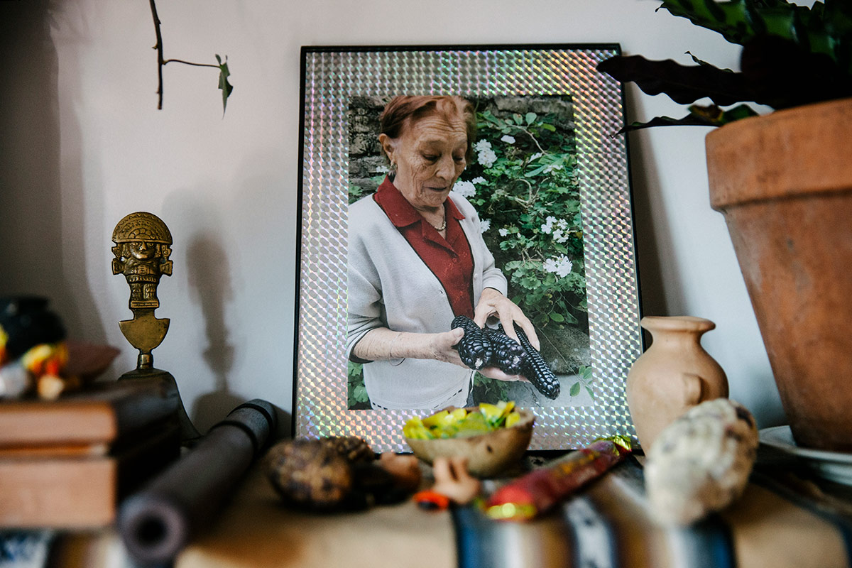 Loba was exposed to herbal medicines through their grandmothers who mostly relied on ancestral remedies. | Samanta Helou Hernandez