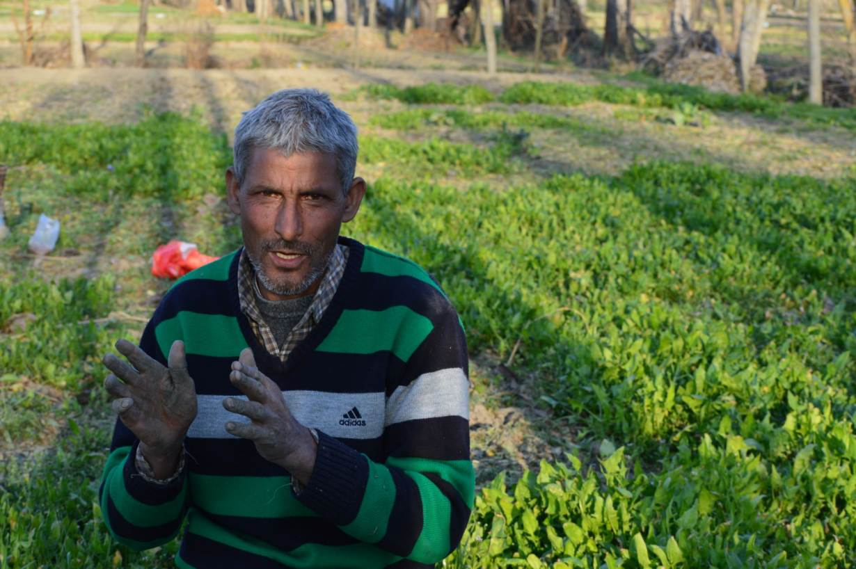 A Kashmiri vegetable farmer discusses his crop at his spinach farm in Budgam, Kashmir, India, March 3, 2020. | Thomson Reuters Foundation/Athar Parvaiz