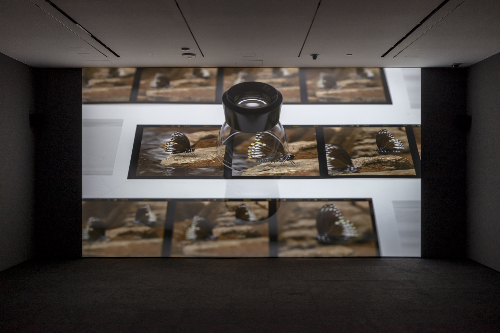 """An installation view of Jeffrey Stuker's work at """"Made in L.A. 2020: a version."""" at Hammer Museum, Los Angeles. 