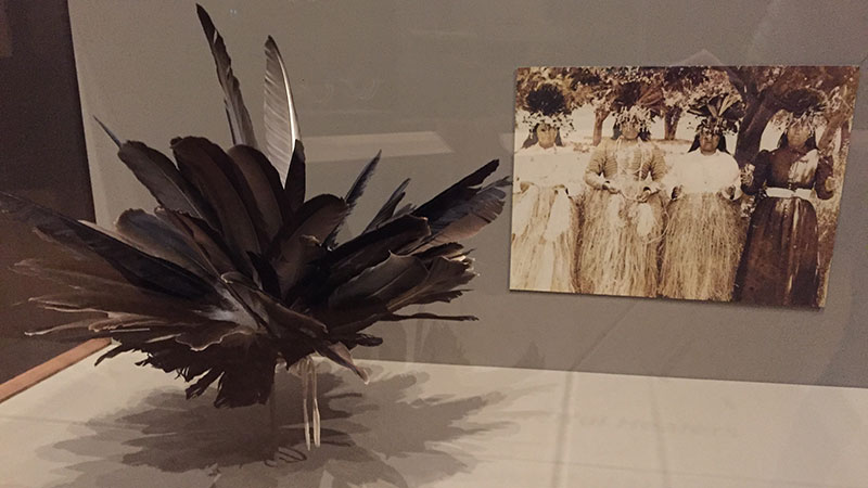 Feather headdress by Kai LaPena