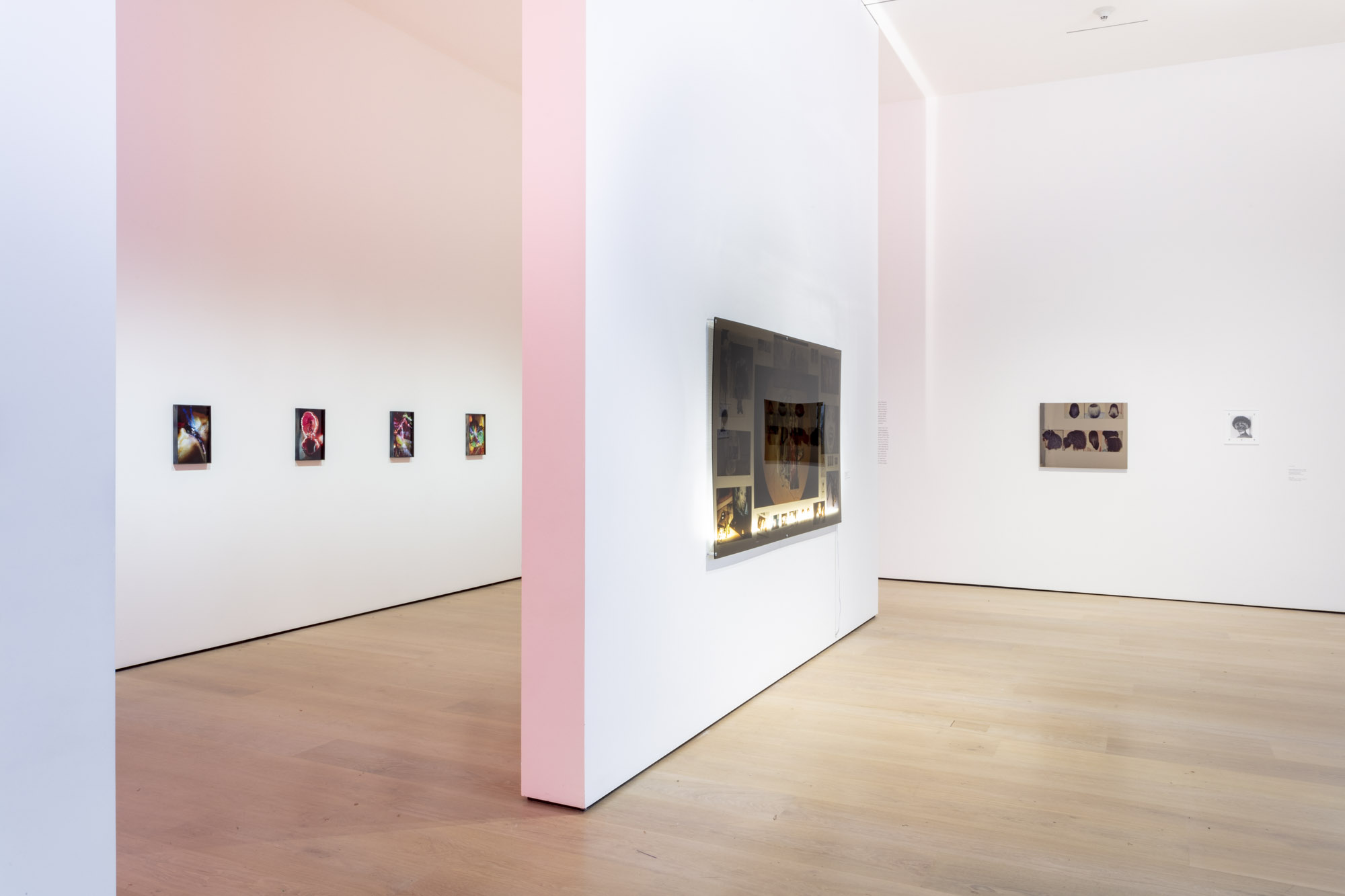 """An installation view of Kandis Williams' work at """"Made in L.A. 2020: a version."""" at Hammer Museum, Los Angeles. 