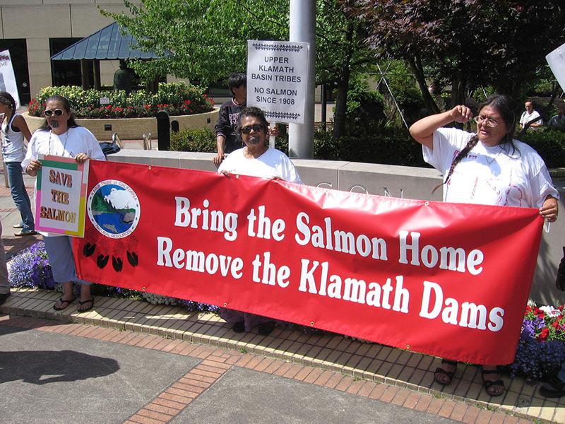klamath-salmon-9-15-16.jpg