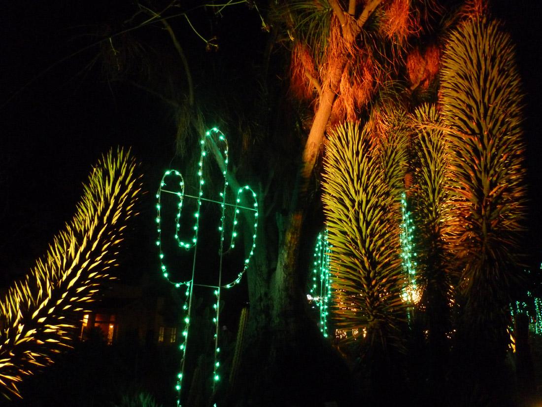 L.A. Zoo Lights (1)