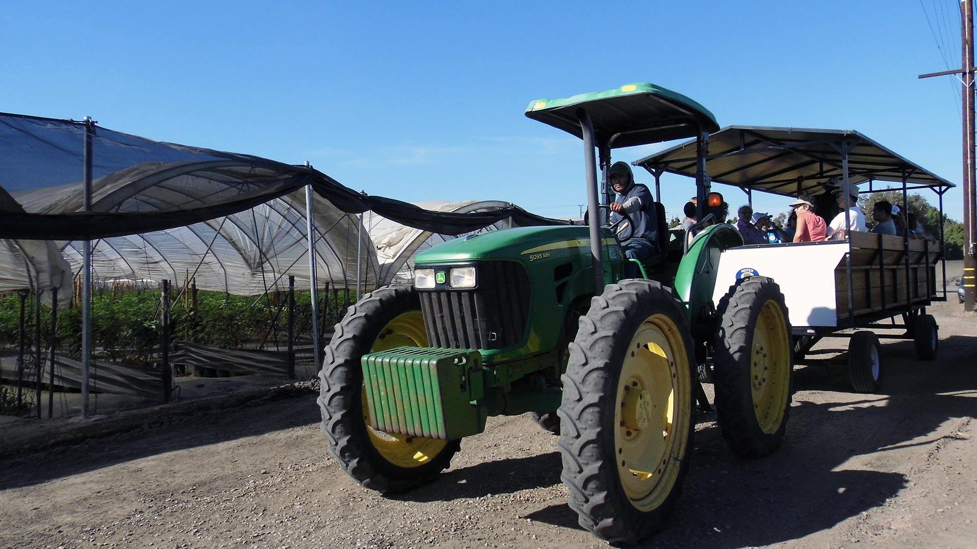 Laguna Farms