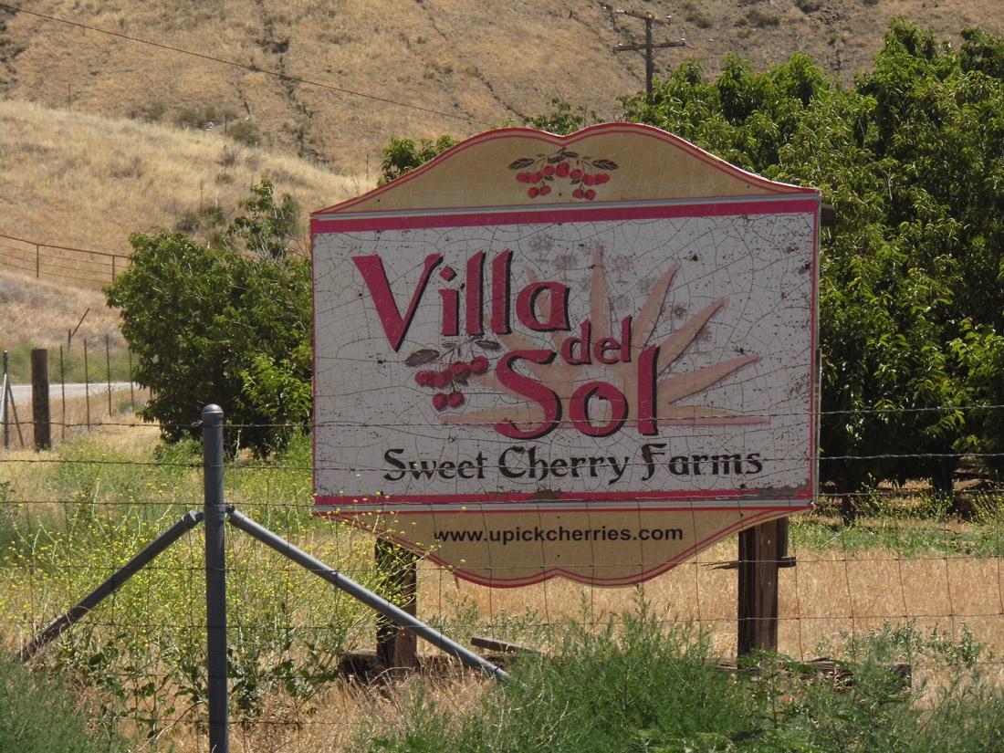 Leona Valley, Cherry Picking