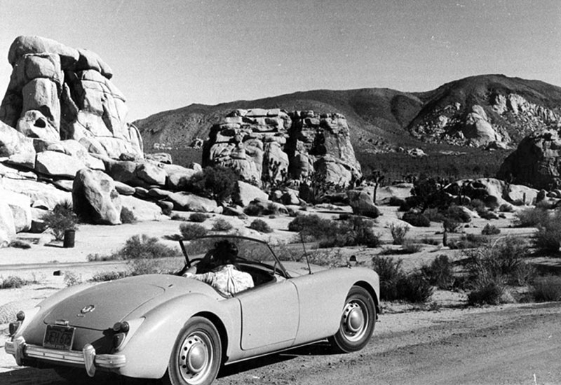 Touring Joshua Tree by car, 1961 | Valley Times Collection/Los Angeles Public Library