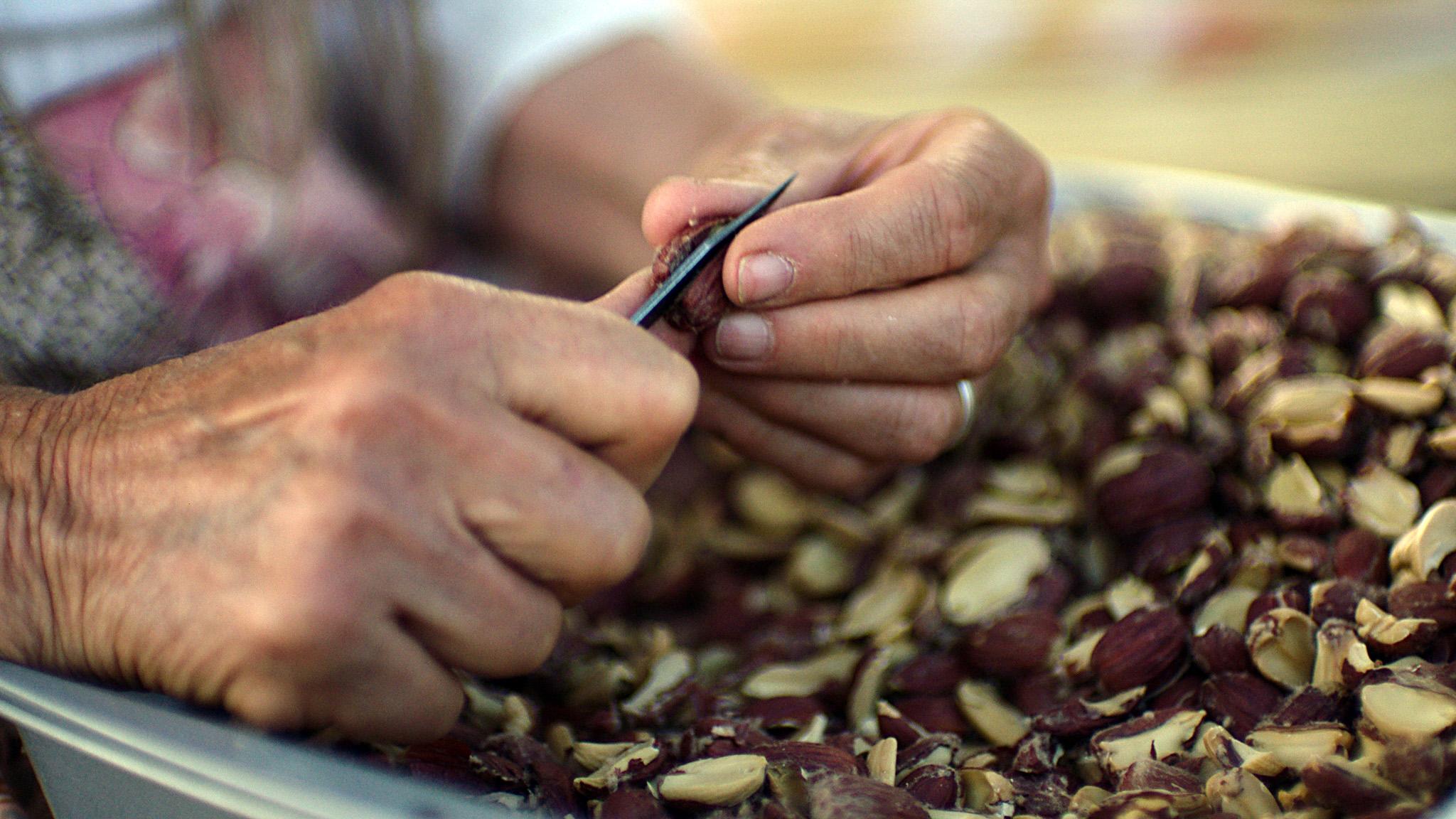 loisconnerbohna_peeling_acorns_northfork.jpg