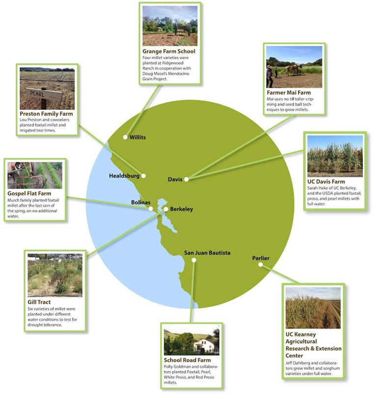Millet Map