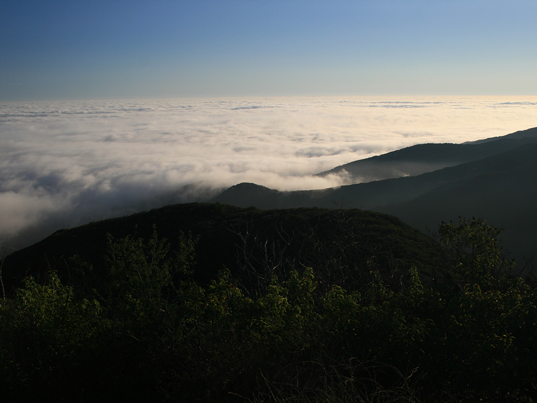 Los Liones Canyon Trail Marine Layer