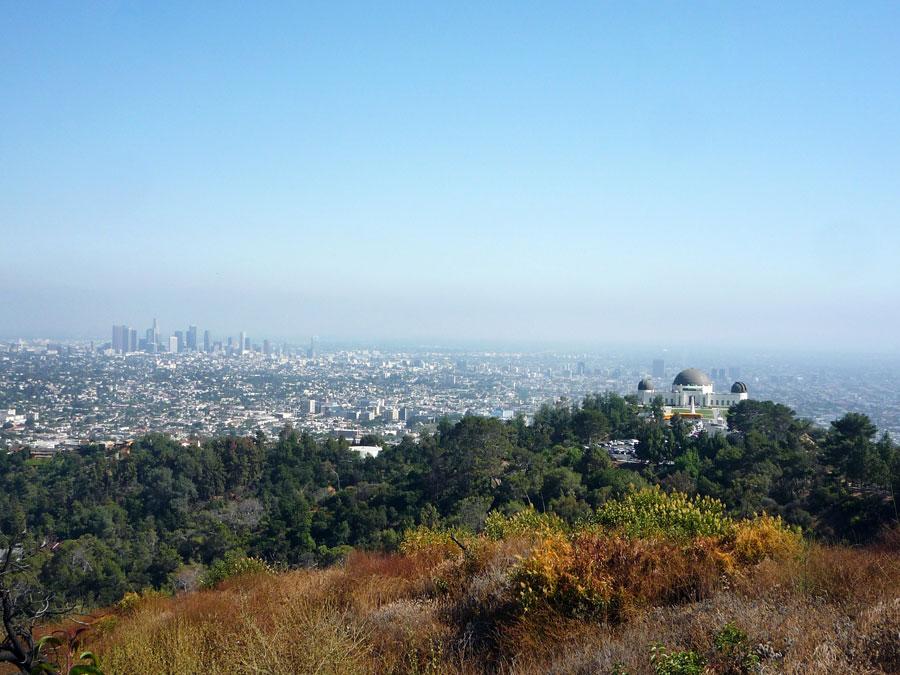 Mt. Hollywood | Sandi Hemmerlein