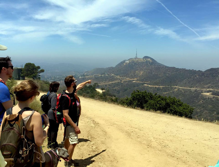 Mt. Hollywood | Erin Johnson