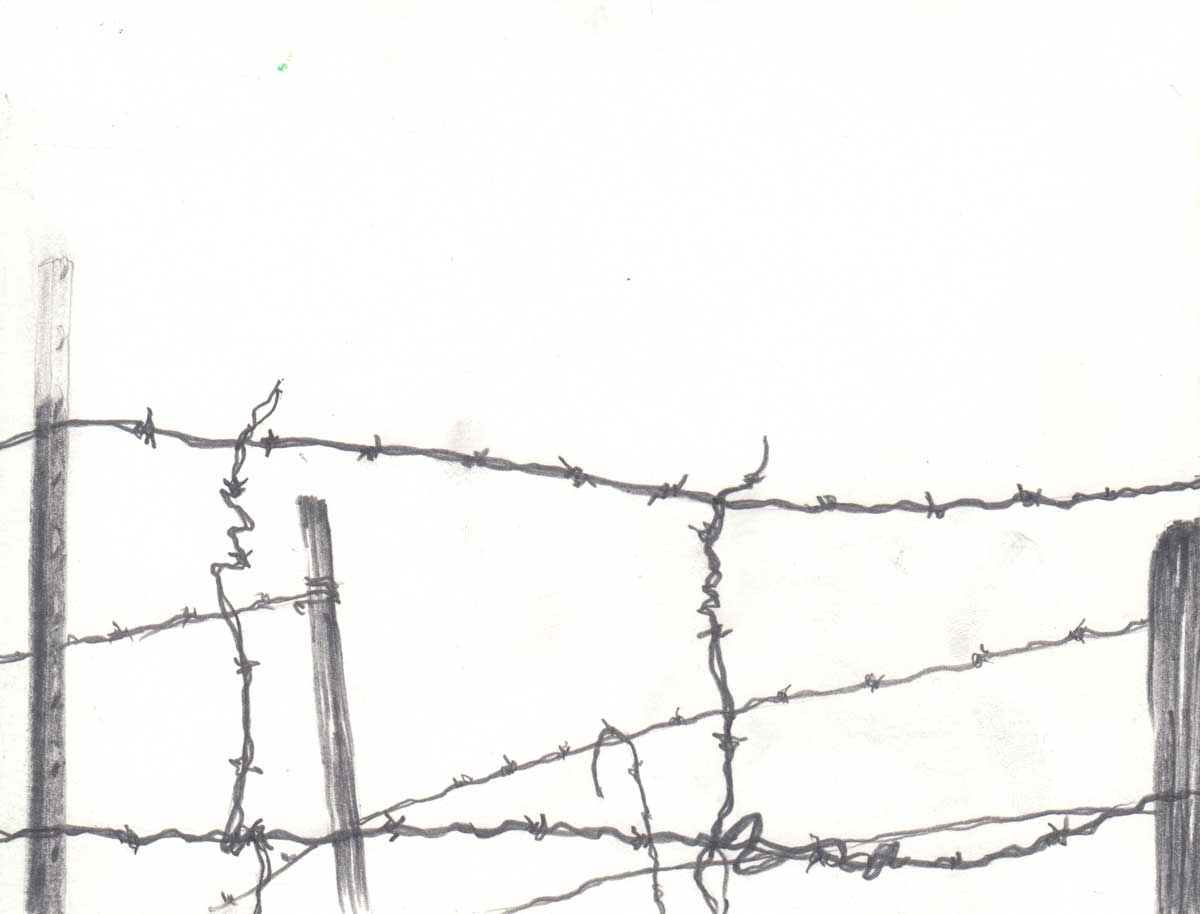 "Nikko Mueller's drawing of barbed wire at San Clemente Border Station for ""Three Border Ecologies"" 