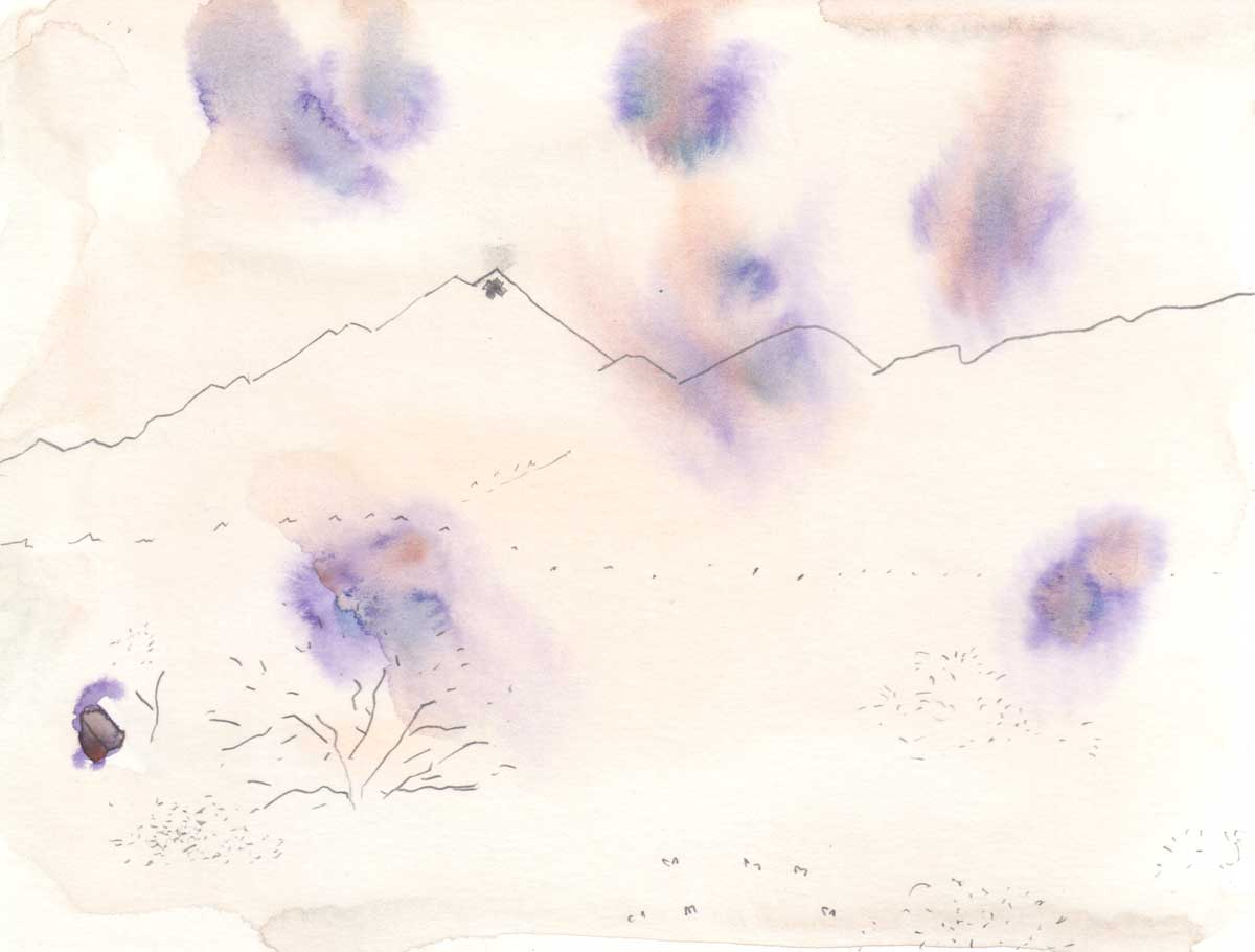 "Hillary Mushkin's artwork with purple blooms of color at the Cleghorn Wilderness site for ""Three Border Ecologies"" 