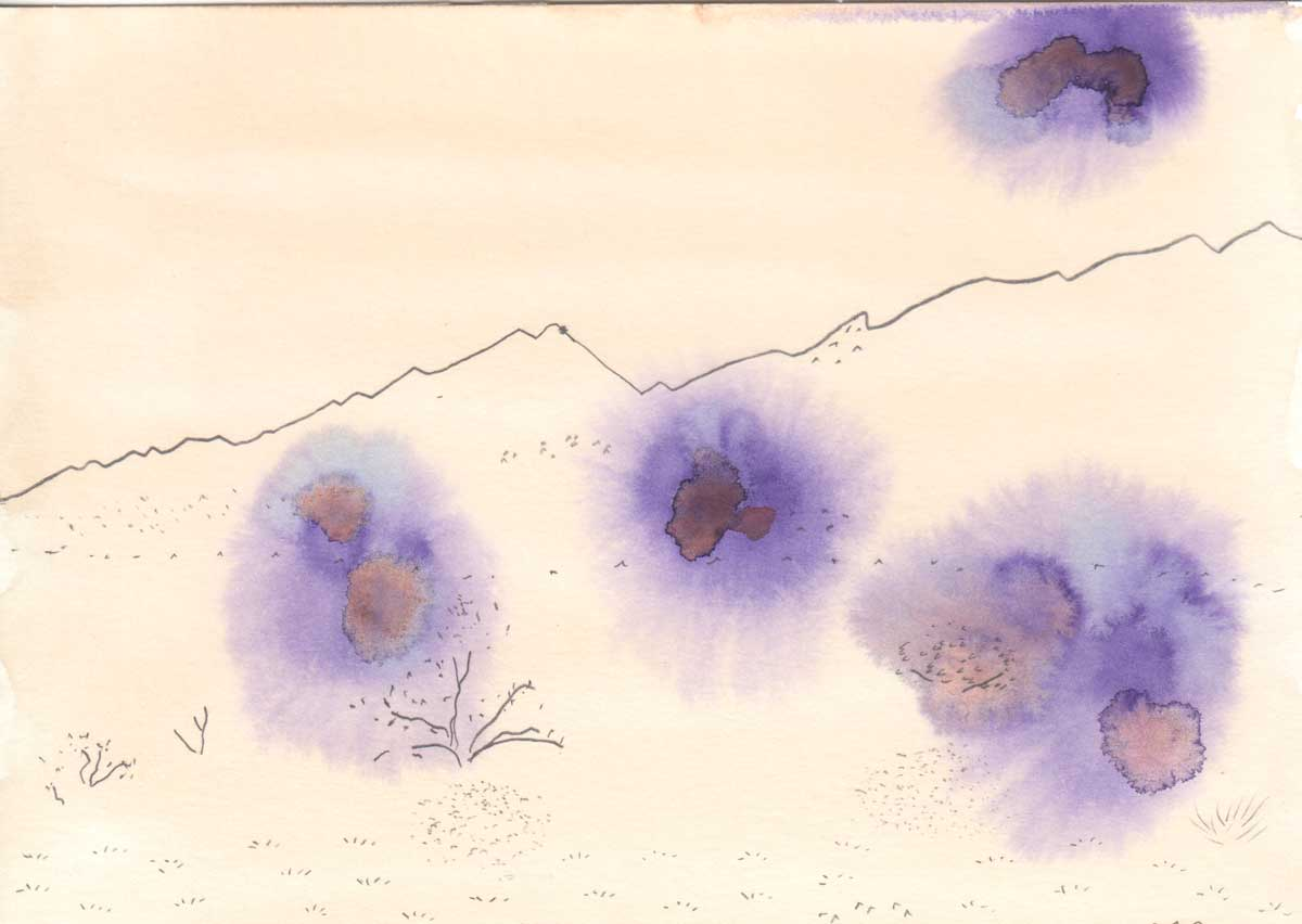 "Hillary Mushkin's artwork with purple blooms at the Cleghorn Wilderness site for ""Three Border Ecologies"" 