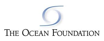 The Ocean Foundation logo