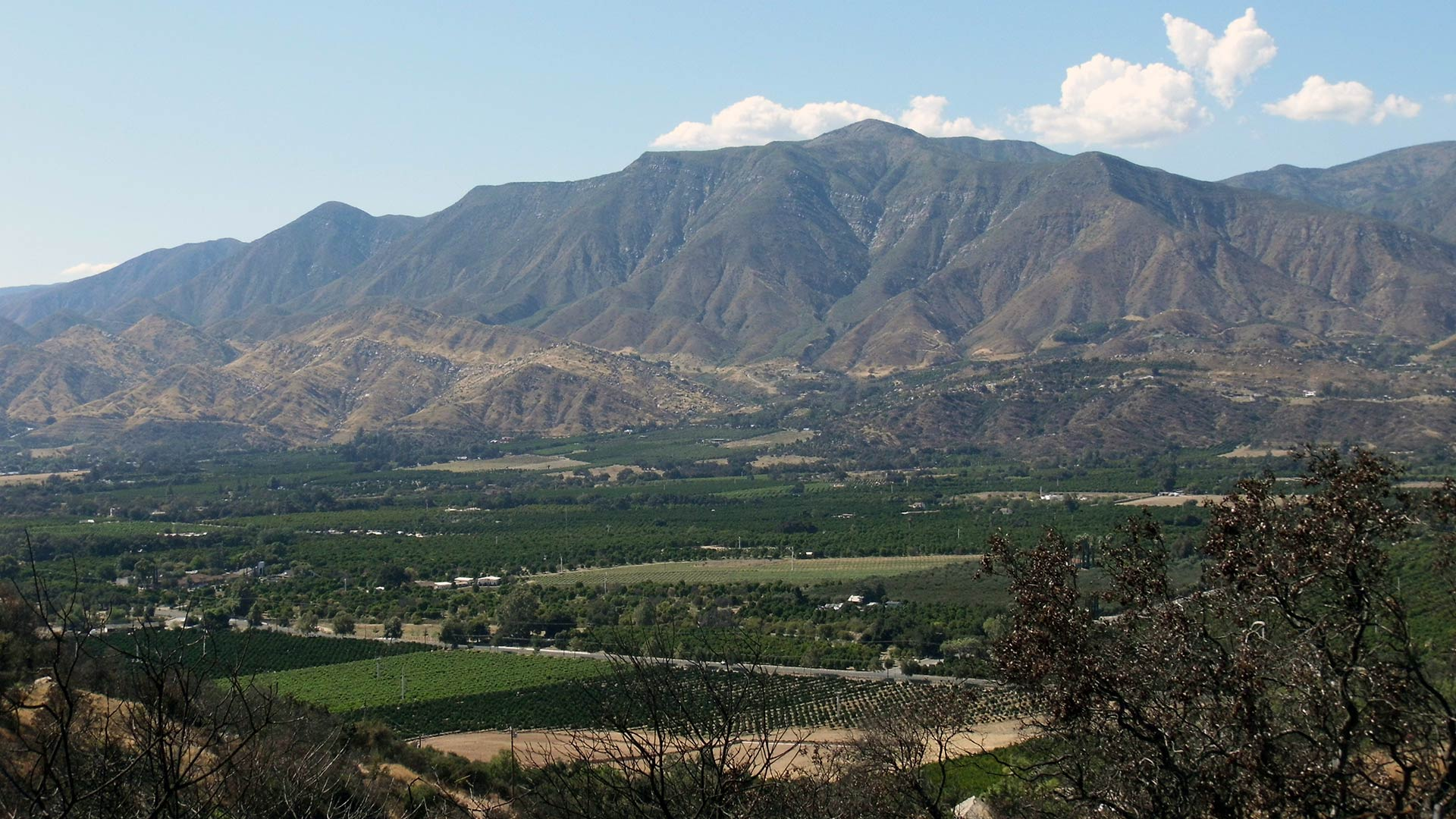 lower ojai valley