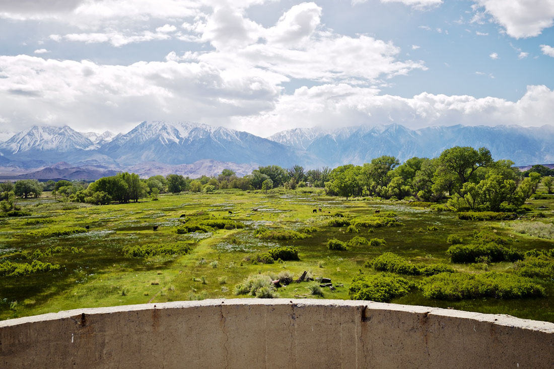 View from Atop Silo onto Naturally Irrigated Pasture and Snowcapped Sierra Nevada - Bishop, CA - 2016 | Osceola Refetoff