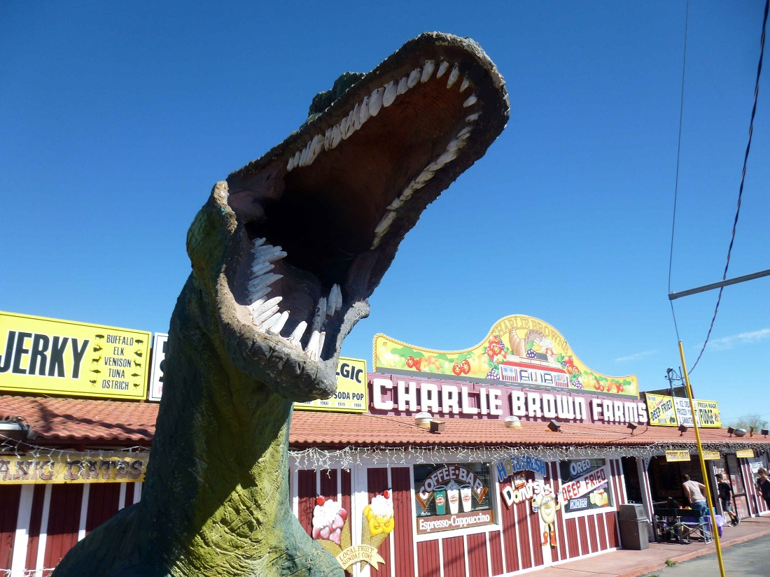 Charlie Brown Farms' Land of Dinosaurs (1)