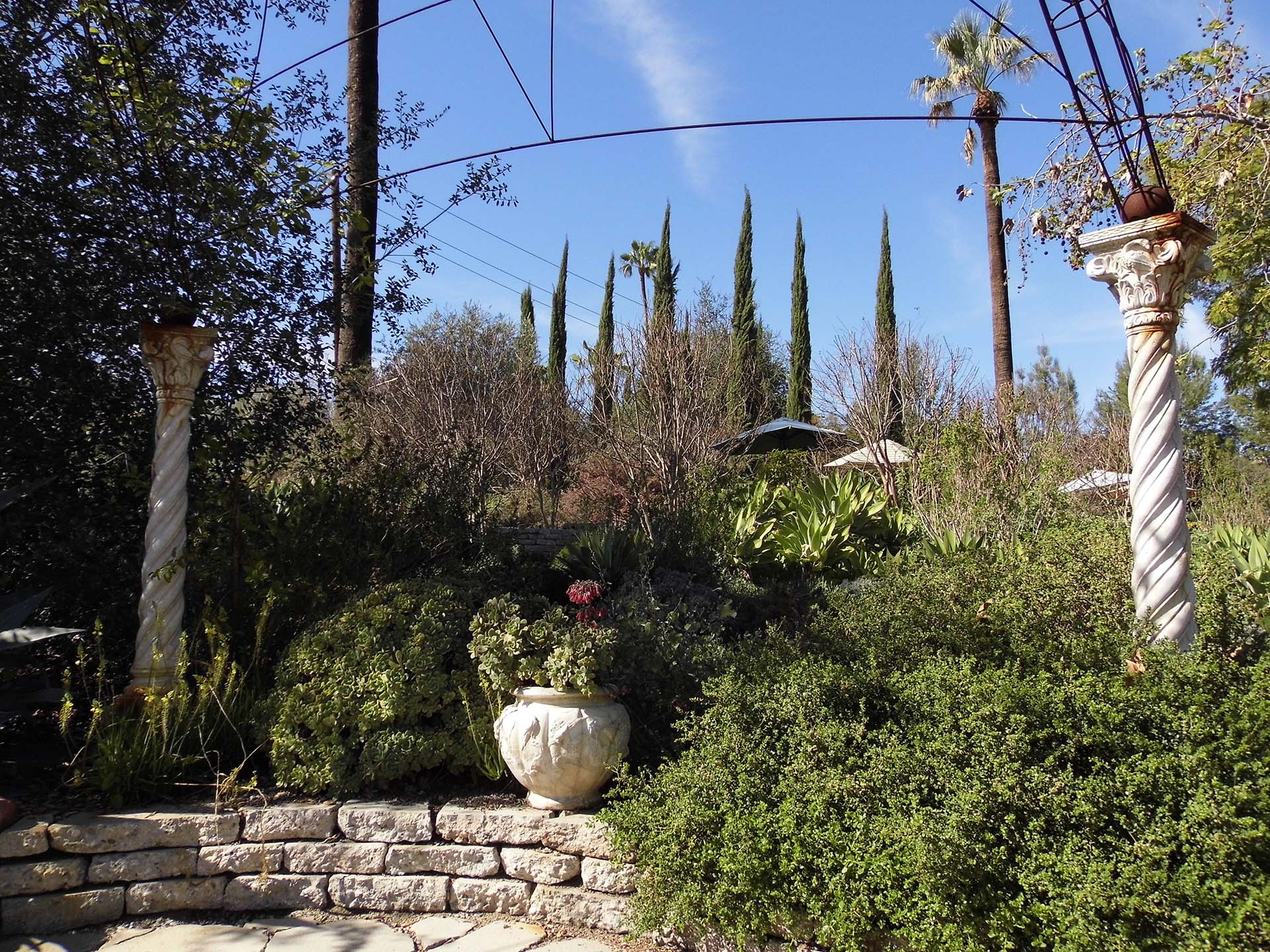 The water wise garden in Arlington Garden | Sandi Hemmerlein