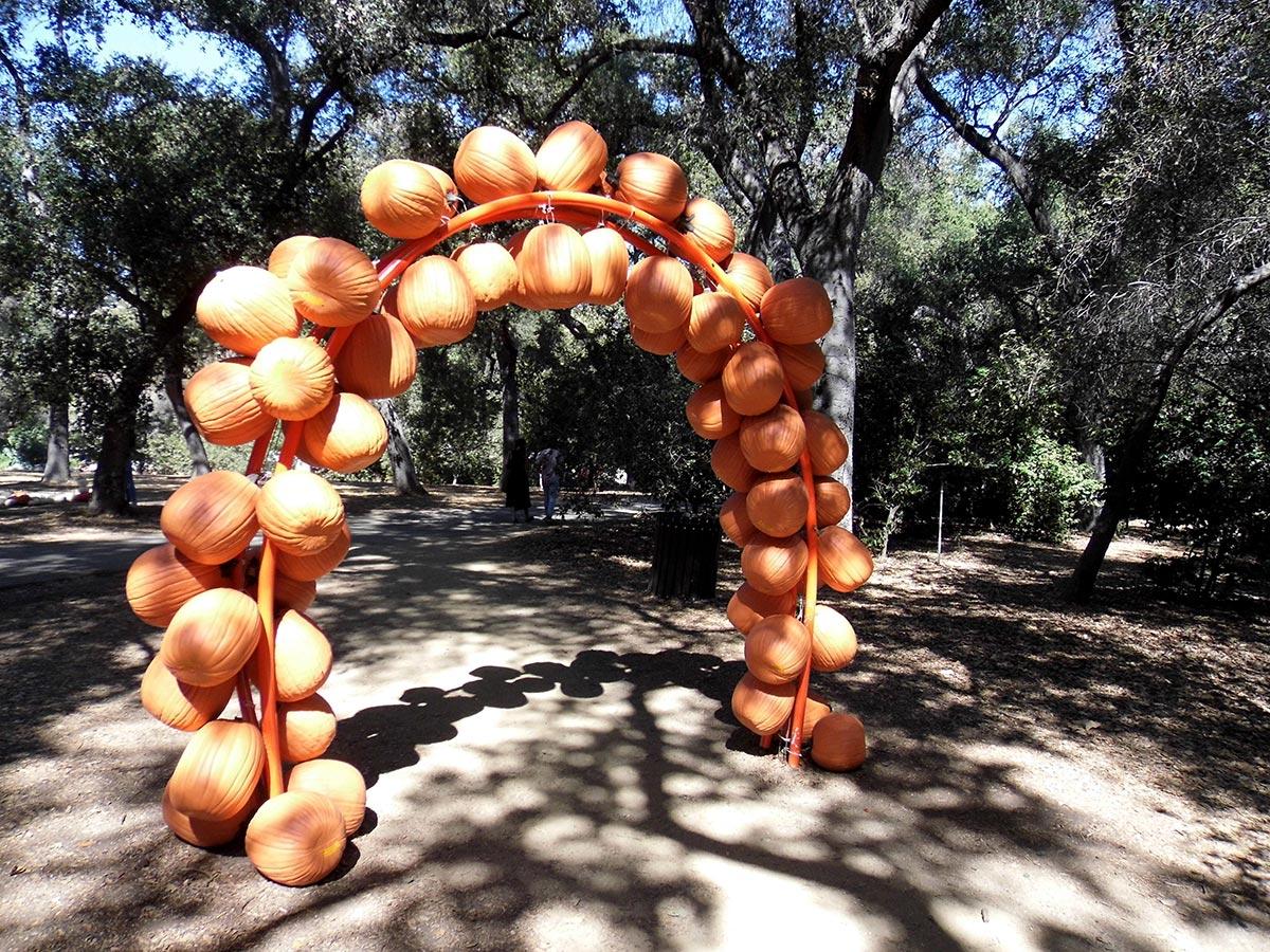 A pumpkin arch at Descanso Gardens. | Sandi Hemmerlein