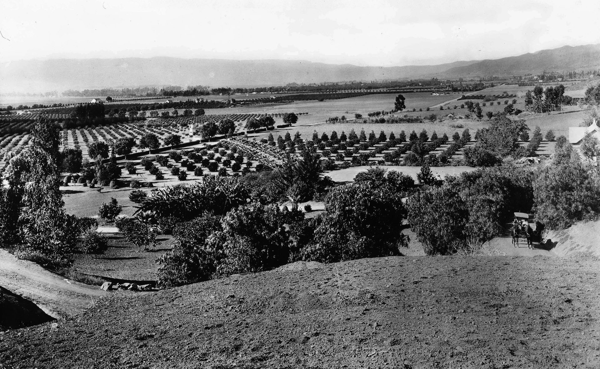 Panoramic view of Hollywood, looking west from Laughlin Park, 1903