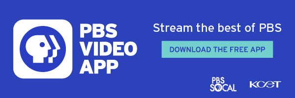 A promotional banner for the PBS Video app.