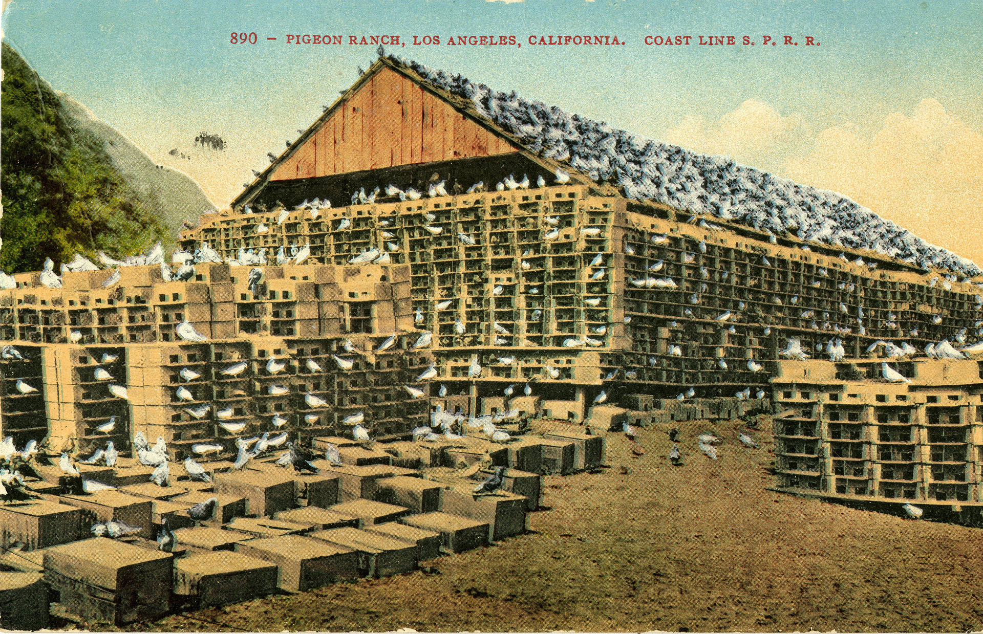 Pigeon Ranch postcard, circa 1907/14