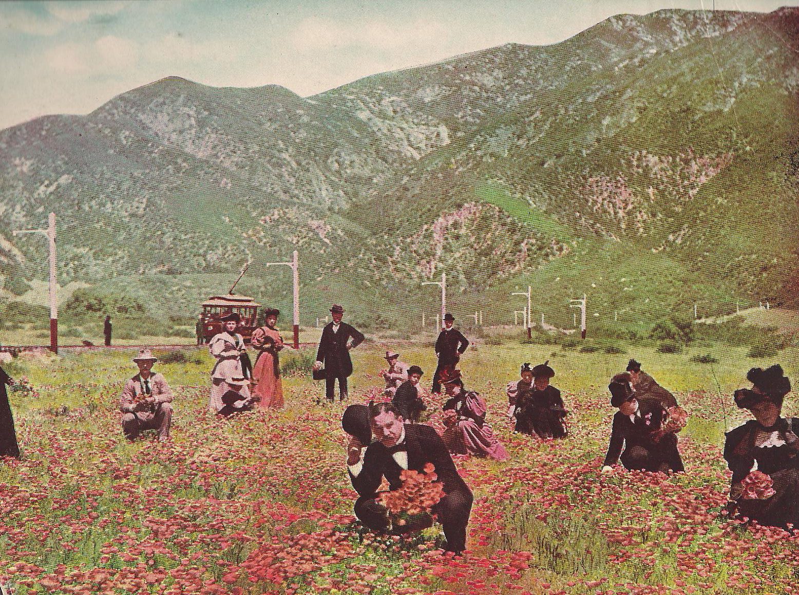 Tourists pick wildflowers in an Altadena poppy field, 1907. Courtesy of the David Klappholz Collection.