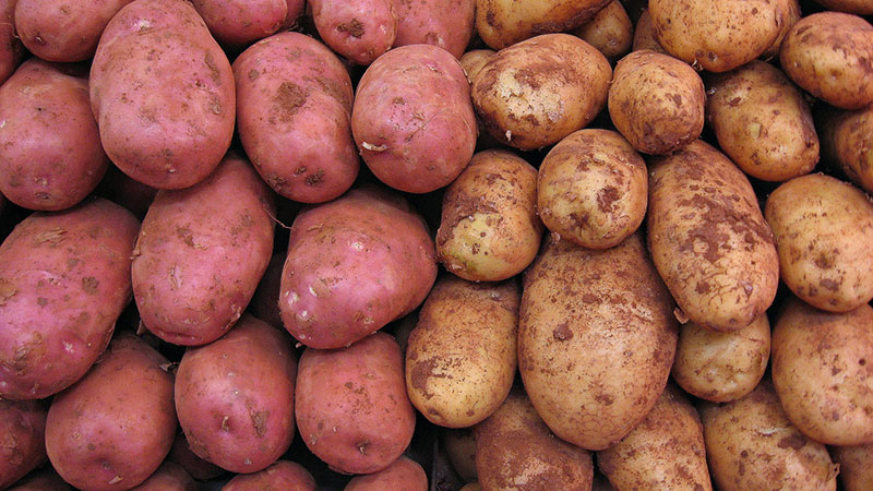 Potatoes | Photo: 16:9clue, some rights reserved