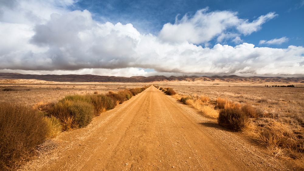 Seven Mile Road in CPNM | Photo: Michael Stubblefield/iStockPhoto