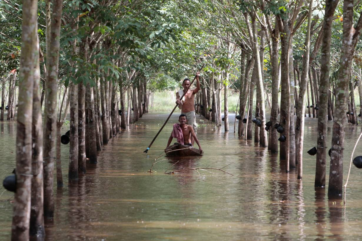 ARCHIVE PHOTO: Phon Tongmak, a rubber tree farmer (back), rows a boat in floodwaters in his rubber plantation with his friend at Cha-uat district in Nakhon Si Thammarat Province, southern Thailand, January 18, 2017. Picture taken January 18, 2017. REUTERS