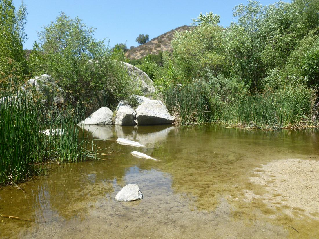 Santa Margarita River and Preserve (1)