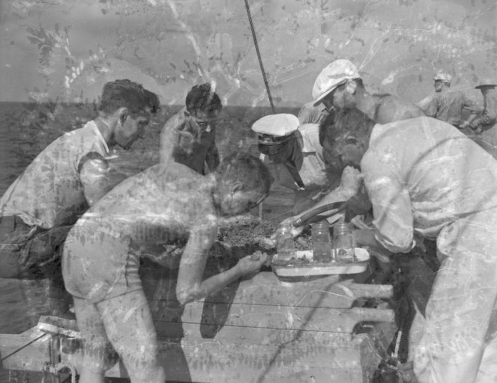 Scientists examine sludge, Velero III, 1934 or 1939 | Allan Hancock Foundation Collection, USC Libraries