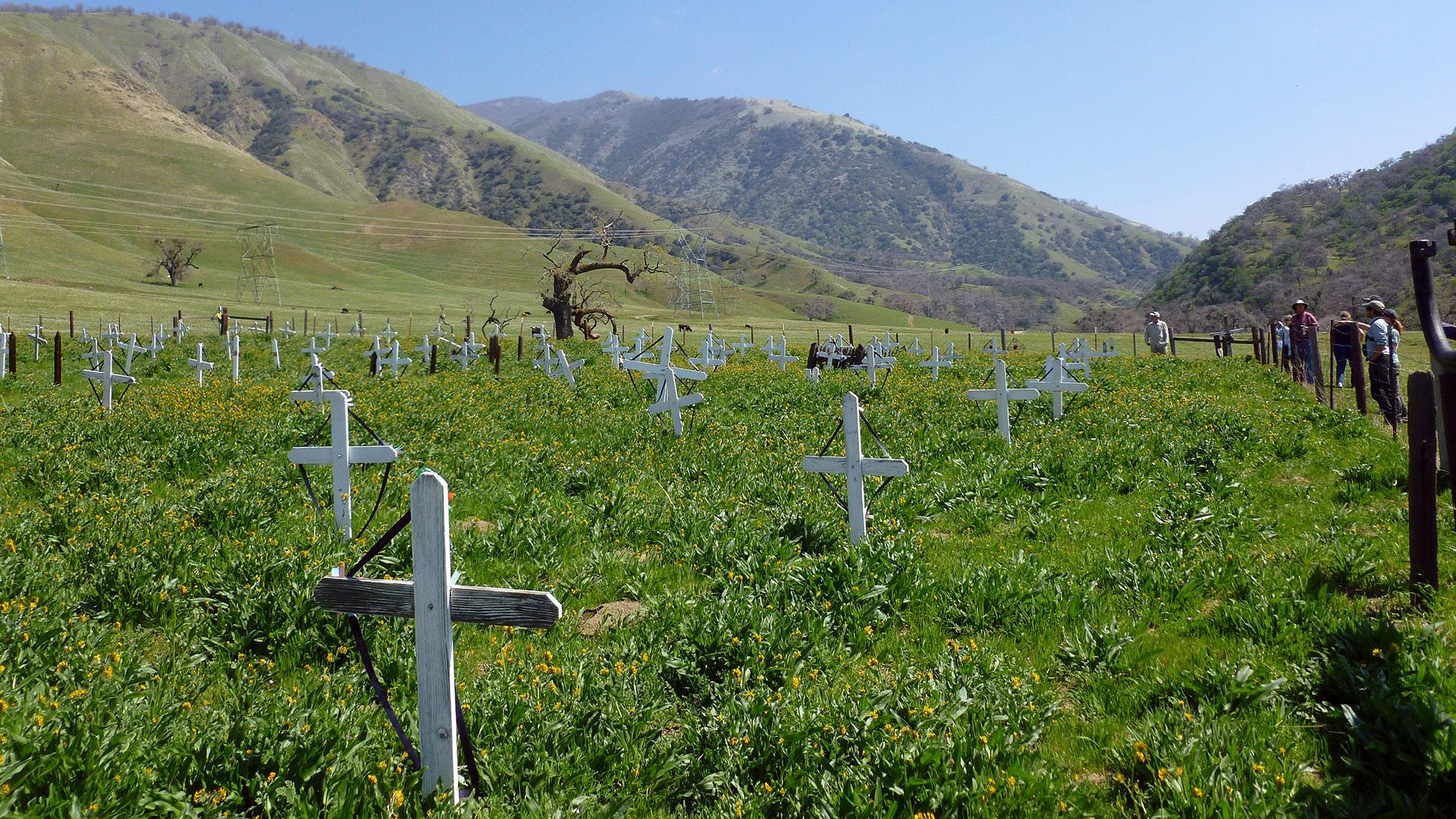 Tejon Indian Settlement Cemetery
