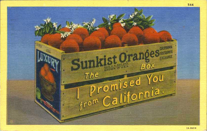 sunskist-oranges-kcet.jpg