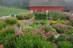 torgrimson dianes garden