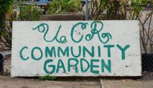 UCR Community Garden