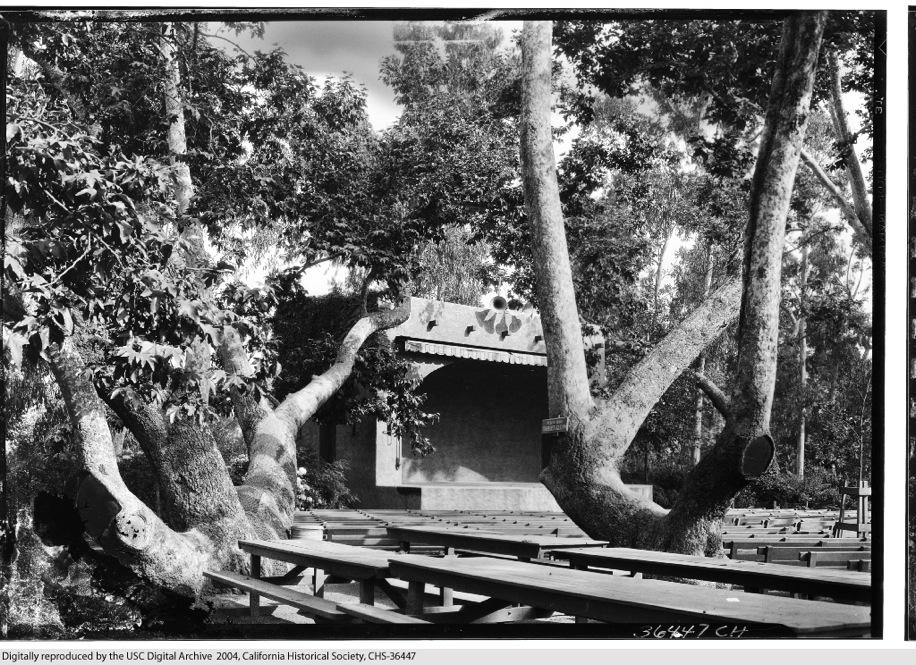 Sycamore Park 7