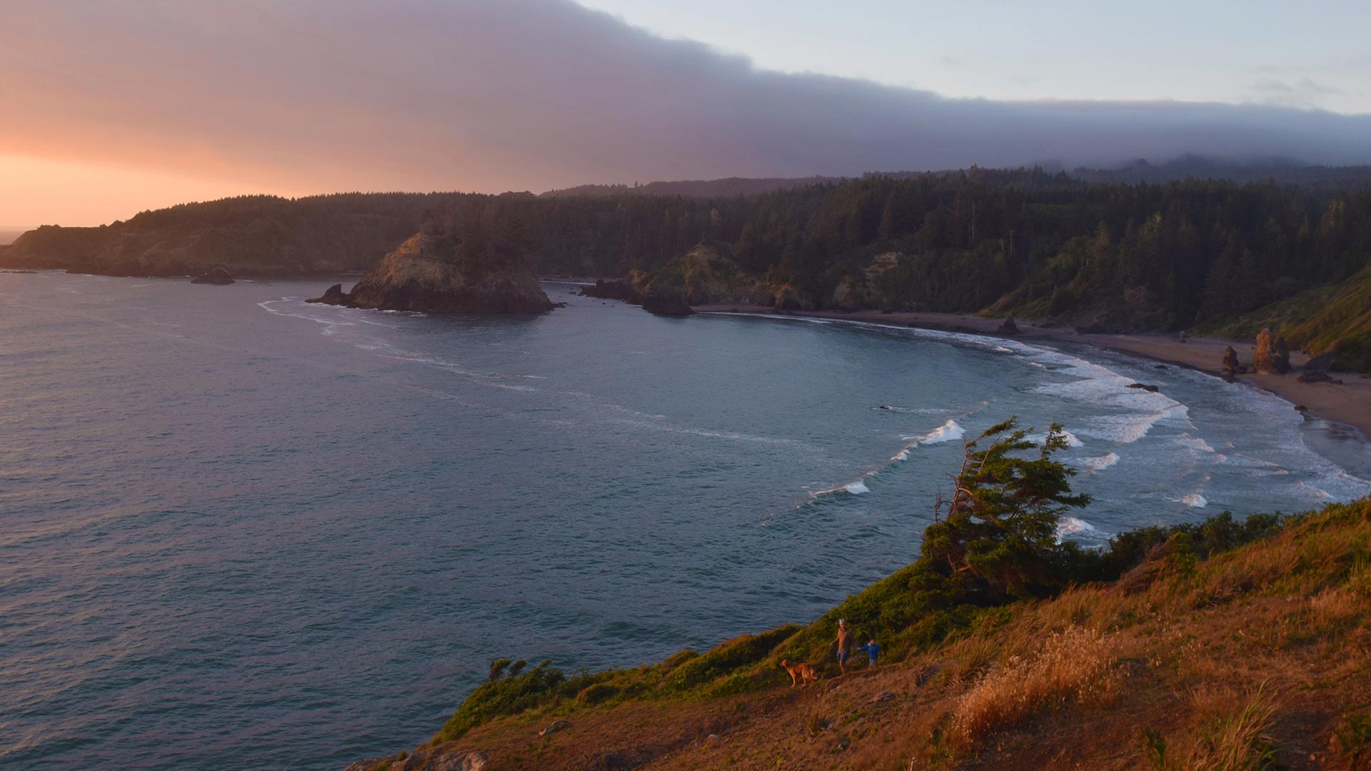 view from trinidad head