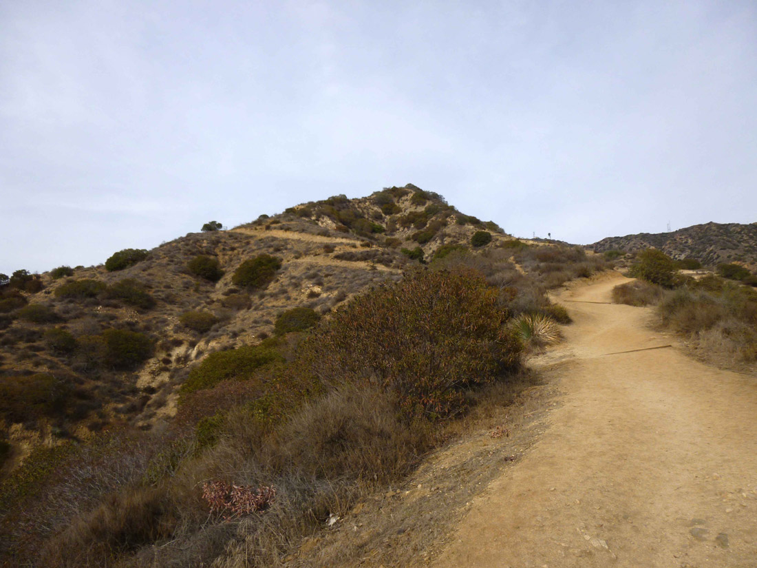 Wildwood Canyon Park (1)